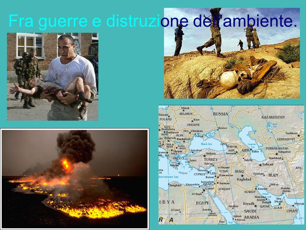 Fra guerre e distruzione dell ambiente.