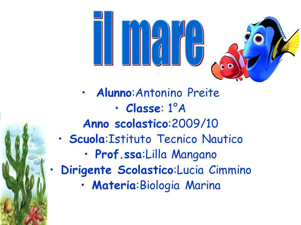 Alunno:Antonino Preite Classe: 1°A Anno scolastico:2009/10 Scuola:Istituto Tecnico Nautico Prof.ssa:Lilla Mangano Dirigente Scolastico:Lucia Cimmino M