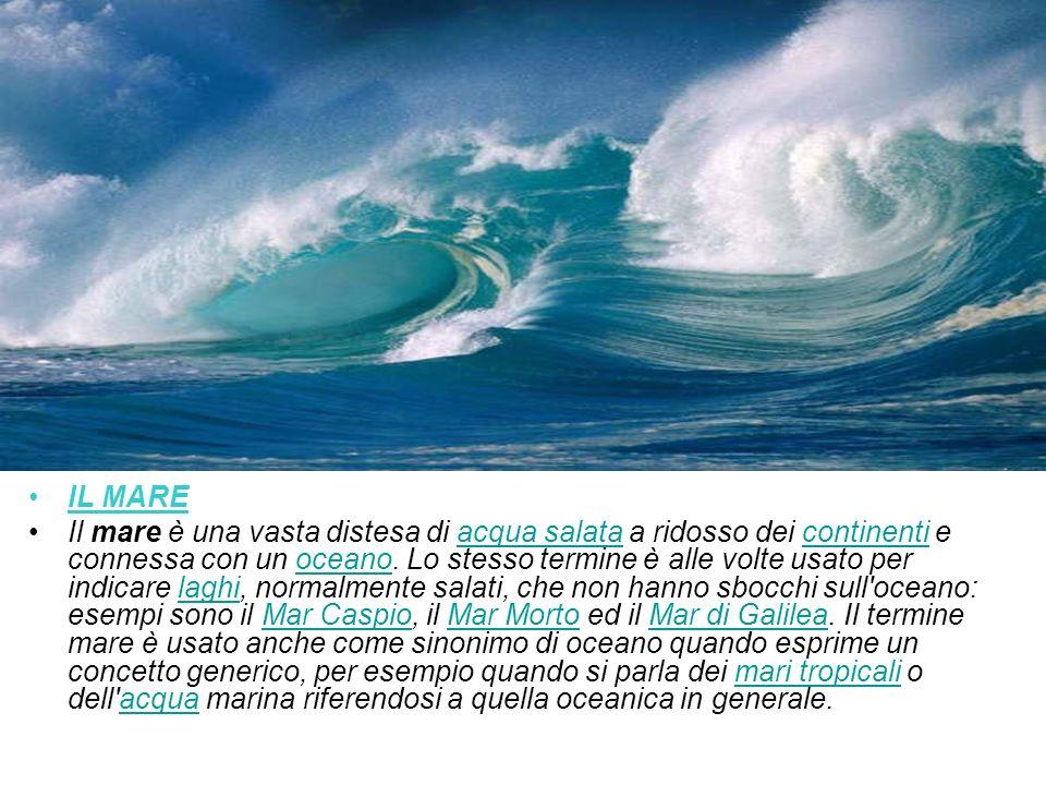 IL MARE Il mare è una vasta distesa di acqua salata a ridosso dei continenti e connessa con un oceano. Lo stesso termine è alle volte usato per indica
