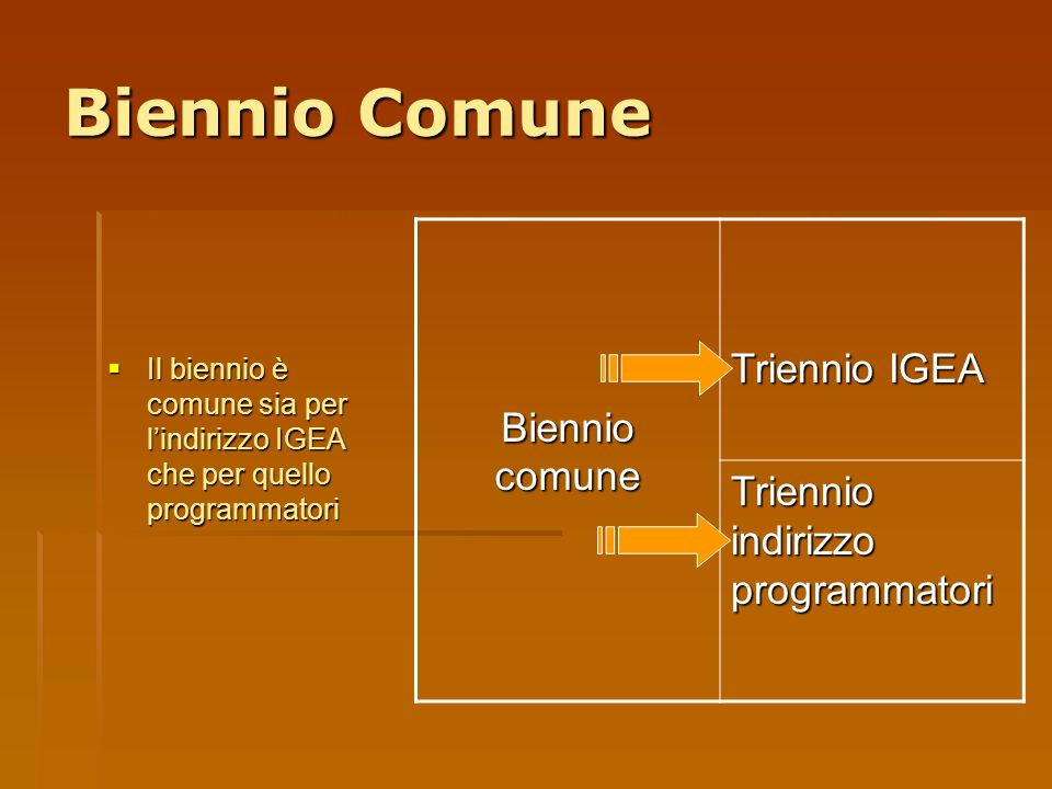 Biennio Comune Il biennio è comune sia per lindirizzo IGEA che per quello programmatori Il biennio è comune sia per lindirizzo IGEA che per quello pro