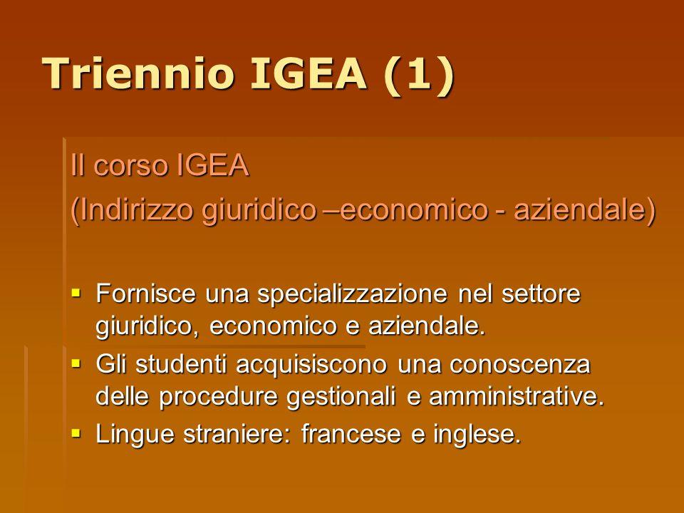 Triennio IGEA (1) Il corso IGEA (Indirizzo giuridico –economico - aziendale) Fornisce una specializzazione nel settore giuridico, economico e aziendal
