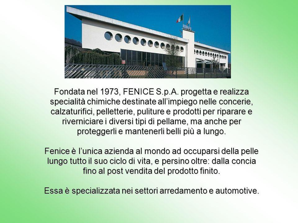 Fondata nel 1973, FENICE S.p.A. progetta e realizza specialità chimiche destinate allimpiego nelle concerie, calzaturifici, pelletterie, puliture e pr