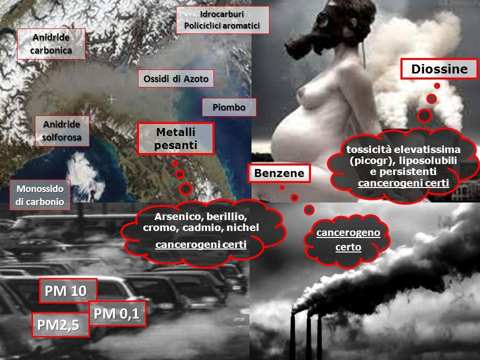 IPA CO PM2,5 Metalli pesanti Idrocarburi Policiclici aromatici Monossido di carbonio tossicità elevatissima (picogr), liposolubili e persistenti cance