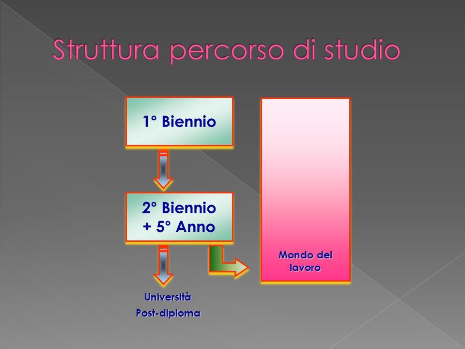 UniversitàPost-diploma 1° Biennio 2° Biennio + 5° Anno 2° Biennio + 5° Anno Mondo del lavoro