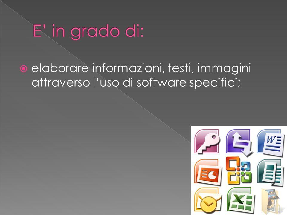 elaborare informazioni, testi, immagini attraverso luso di software specifici;