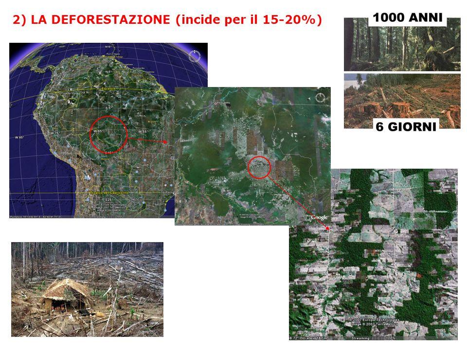 2) LA DEFORESTAZIONE (incide per il 15-20%)