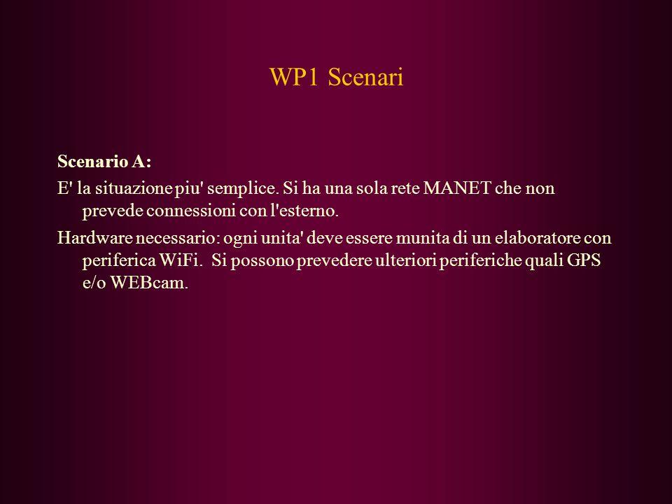 WP1 Scenari Scenario A: E la situazione piu semplice.