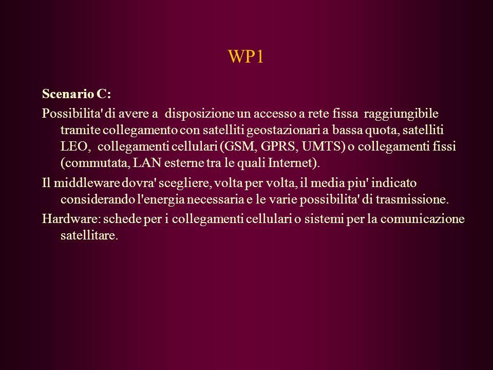 WP1 Scenario C: Possibilita di avere a disposizione un accesso a rete fissa raggiungibile tramite collegamento con satelliti geostazionari a bassa quota, satelliti LEO, collegamenti cellulari (GSM, GPRS, UMTS) o collegamenti fissi (commutata, LAN esterne tra le quali Internet).