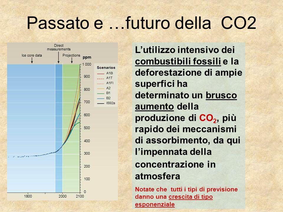 Passato e …futuro della CO2 Lutilizzo intensivo dei combustibili fossili e la deforestazione di ampie superfici ha determinato un brusco aumento della