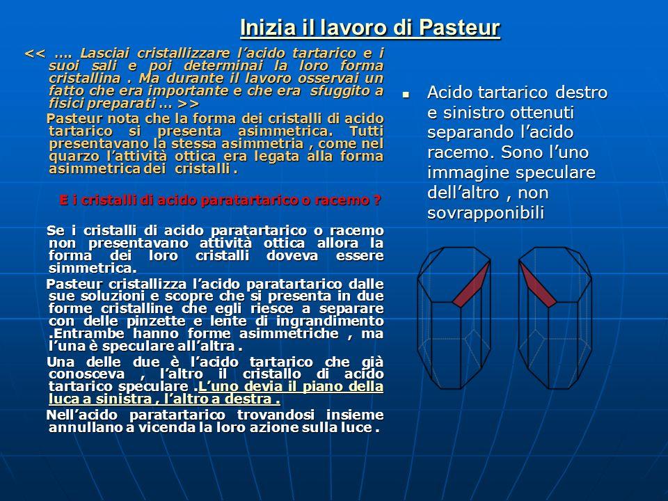 Inizia il lavoro di Pasteur Inizia il lavoro di Pasteur > > Pasteur nota che la forma dei cristalli di acido tartarico si presenta asimmetrica. Tutti