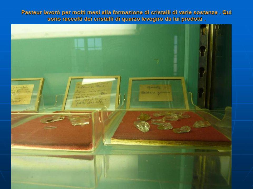 Pasteur lavorò per molti mesi alla formazione di cristalli di varie sostanze. Qui sono raccolti dei cristalli di quarzo levogiro da lui prodotti.