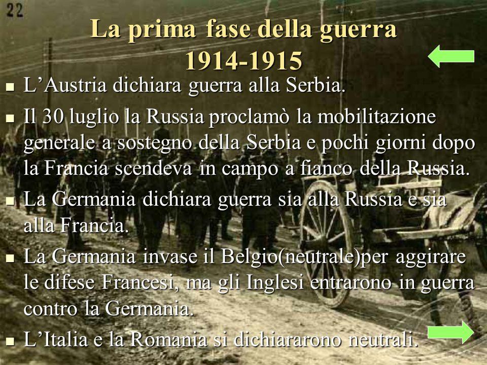 La prima fase della guerra 1914-1915 LAustria dichiara guerra alla Serbia.