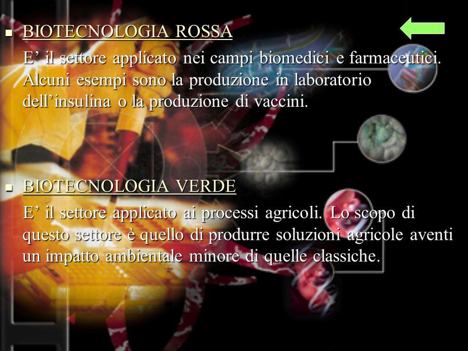 BIOTECNOLOGIA ROSSA BIOTECNOLOGIA ROSSA BIOTECNOLOGIA ROSSA BIOTECNOLOGIA ROSSA E il settore applicato nei campi biomedici e farmaceutici.
