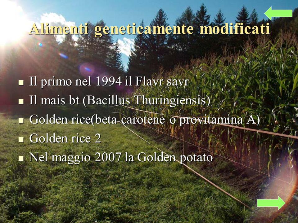 Alimenti geneticamente modificati Il primo nel 1994 il Flavr savr Il primo nel 1994 il Flavr savr Il mais bt (Bacillus Thuringiensis) Il mais bt (Bacillus Thuringiensis) Golden rice(beta carotene o provitamina A) Golden rice(beta carotene o provitamina A) Golden rice 2 Golden rice 2 Nel maggio 2007 la Golden potato Nel maggio 2007 la Golden potato