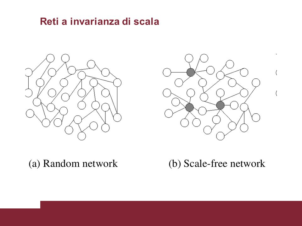 Reti a invarianza di scala