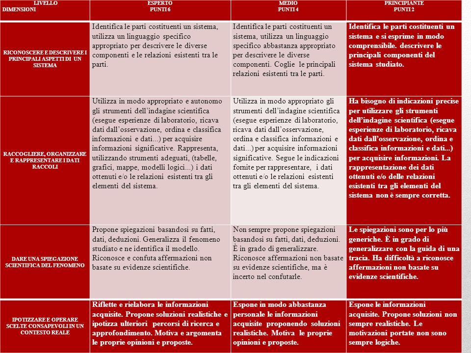 LIVELLO DIMENSIONI ESPERTO PUNTI 6 MEDIO PUNTI 4 PRINCIPIANTE PUNTI 2 RICONOSCERE E DESCRIVERE I PRINCIPALI ASPETTI DI UN SISTEMA Identifica le parti