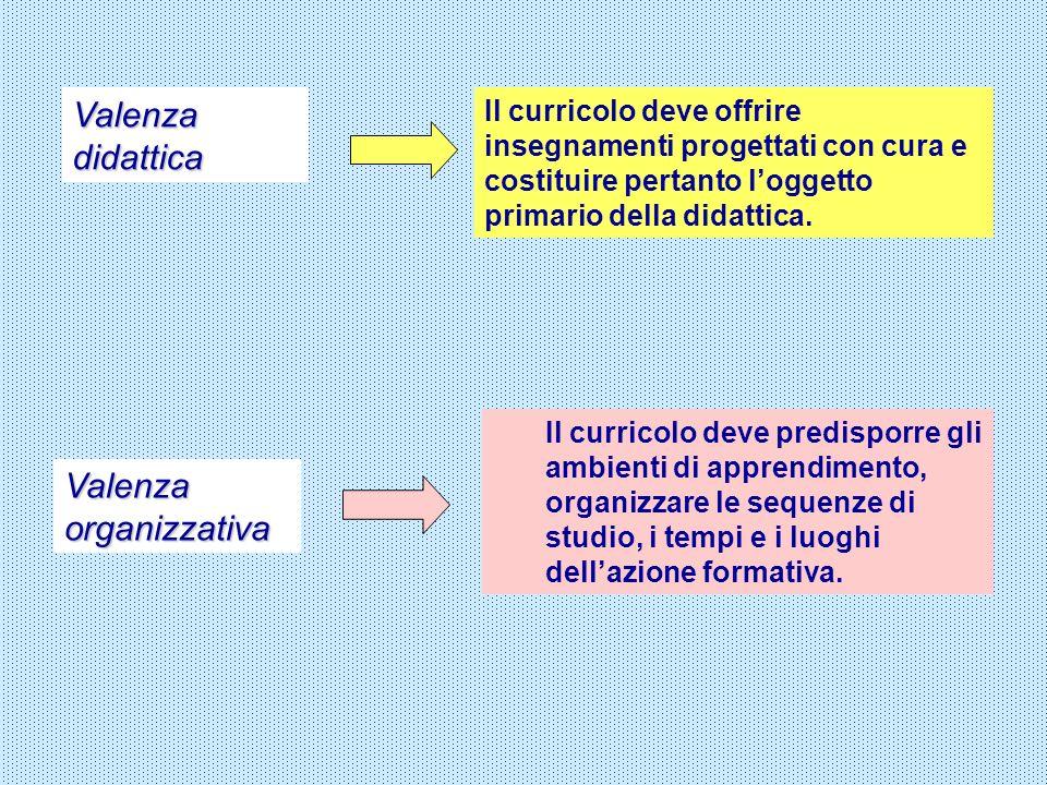 Valenza didattica Valenza organizzativa Il curricolo deve offrire insegnamenti progettati con cura e costituire pertanto loggetto primario della didat