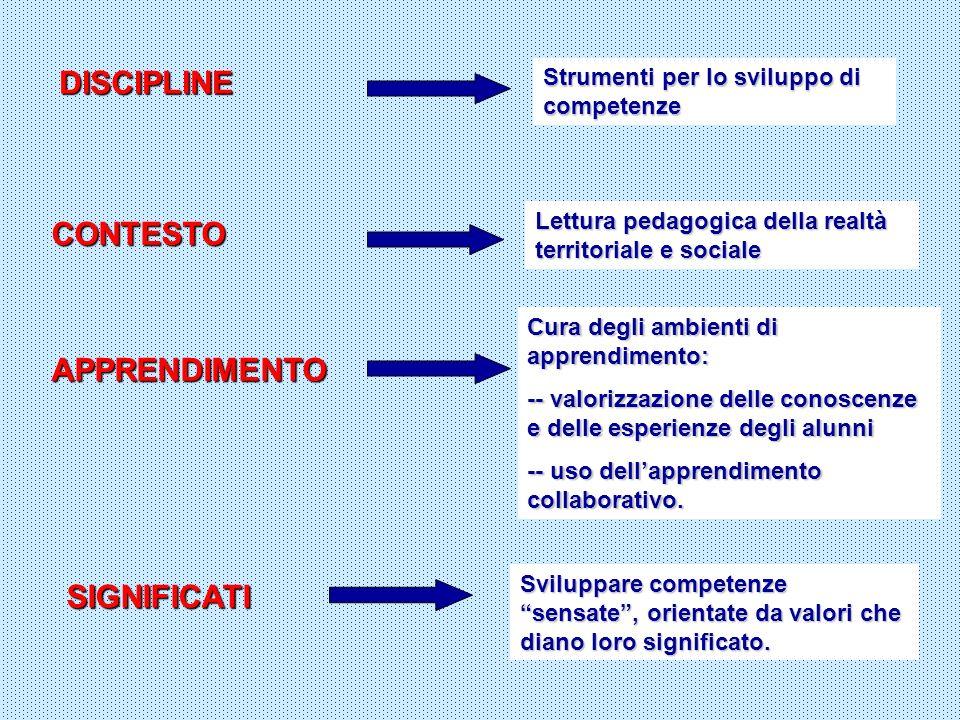DISCIPLINE Strumenti per lo sviluppo di competenze CONTESTO Lettura pedagogica della realtà territoriale e sociale APPRENDIMENTO Cura degli ambienti d