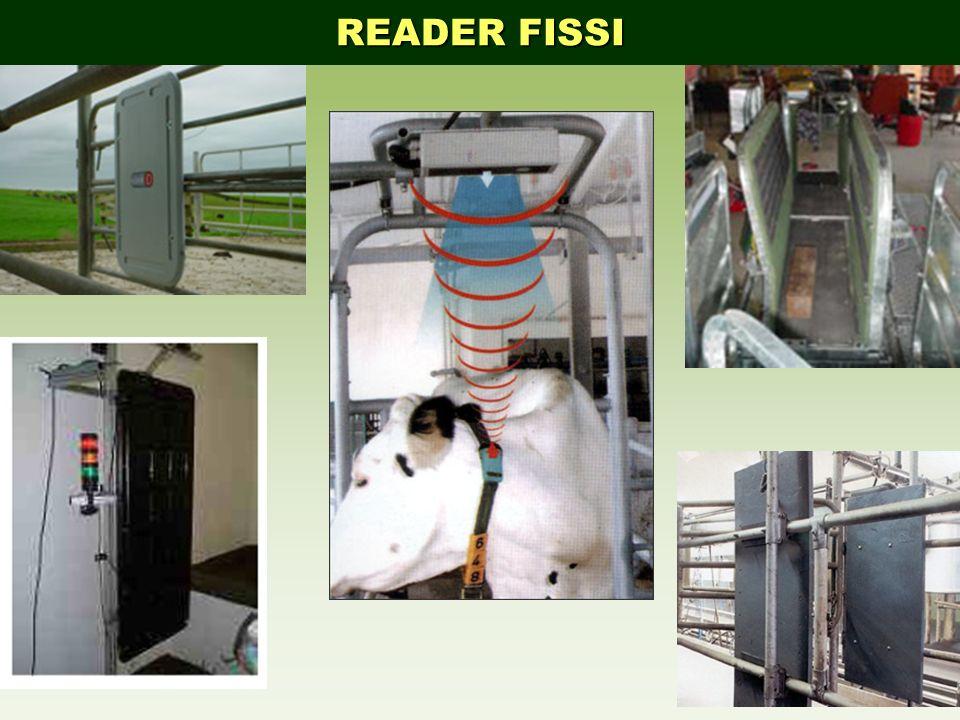 READER FISSI
