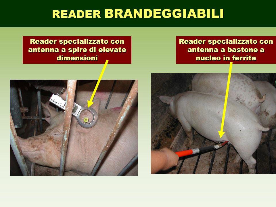 READER BRANDEGGIABILI Reader specializzato con antenna a spire di elevate dimensioni Reader specializzato con antenna a bastone a nucleo in ferrite