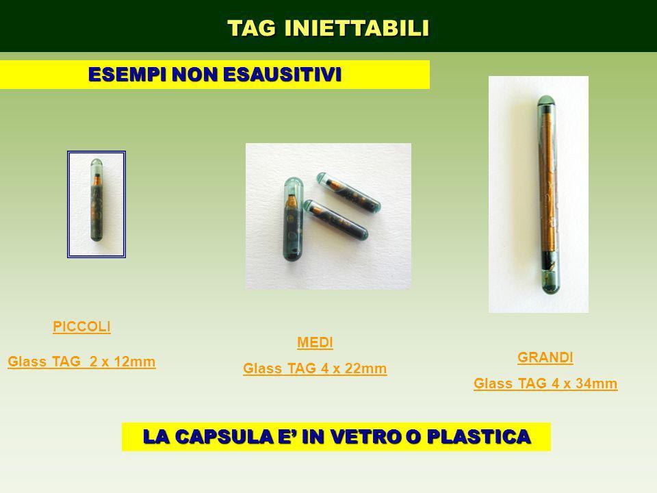 GRANDI Glass TAG 4 x 34mm PICCOLI Glass TAG 2 x 12mm MEDI Glass TAG 4 x 22mm TAG INIETTABILI LA CAPSULA E IN VETRO O PLASTICA ESEMPI NON ESAUSITIVI
