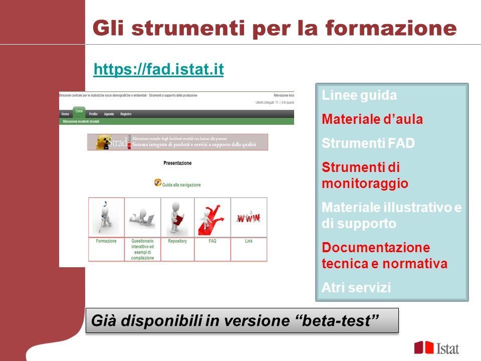 Gli strumenti per la formazione https://fad.istat.it Linee guida Materiale daula Strumenti FAD Strumenti di monitoraggio Materiale illustrativo e di s