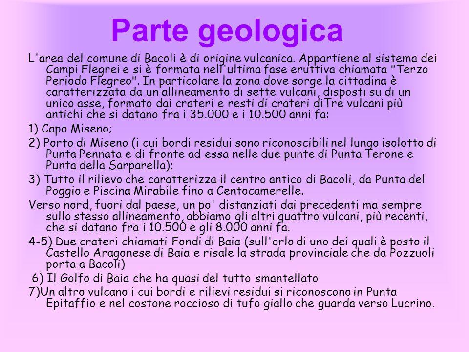 Parte geologica L'area del comune di Bacoli è di origine vulcanica. Appartiene al sistema dei Campi Flegrei e si è formata nell'ultima fase eruttiva c