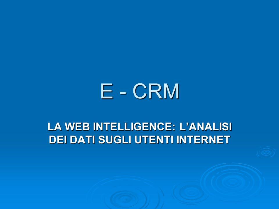E - CRM LA WEB INTELLIGENCE: LANALISI DEI DATI SUGLI UTENTI INTERNET