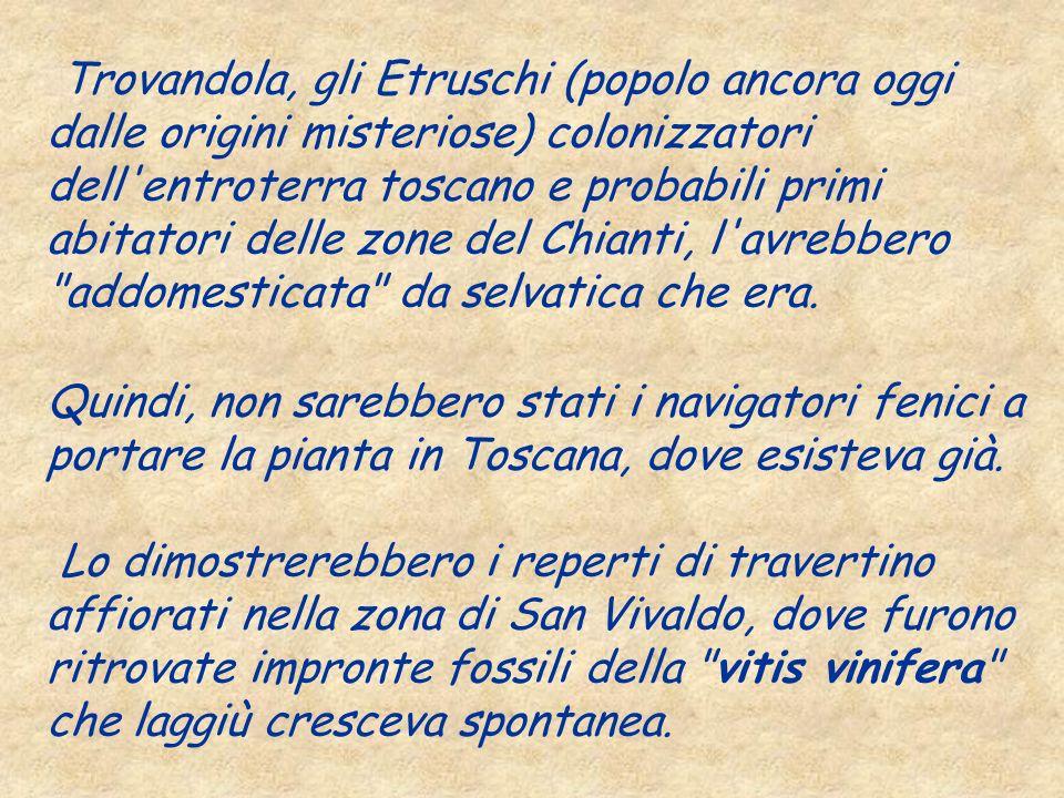 Trovandola, gli Etruschi (popolo ancora oggi dalle origini misteriose) colonizzatori dell'entroterra toscano e probabili primi abitatori delle zone de