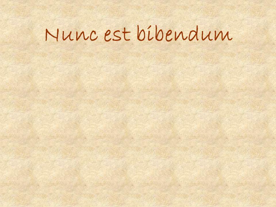 Nunc est bibendum