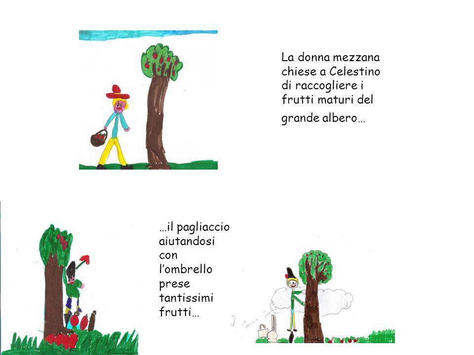 La donna mezzana chiese a Celestino di raccogliere i frutti maturi del grande albero… …il pagliaccio aiutandosi con lombrello prese tantissimi frutti…