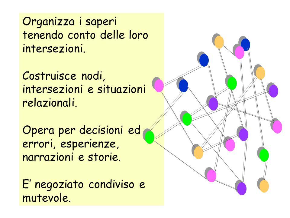 Organizza i saperi tenendo conto delle loro intersezioni. Costruisce nodi, intersezioni e situazioni relazionali. Opera per decisioni ed errori, esper