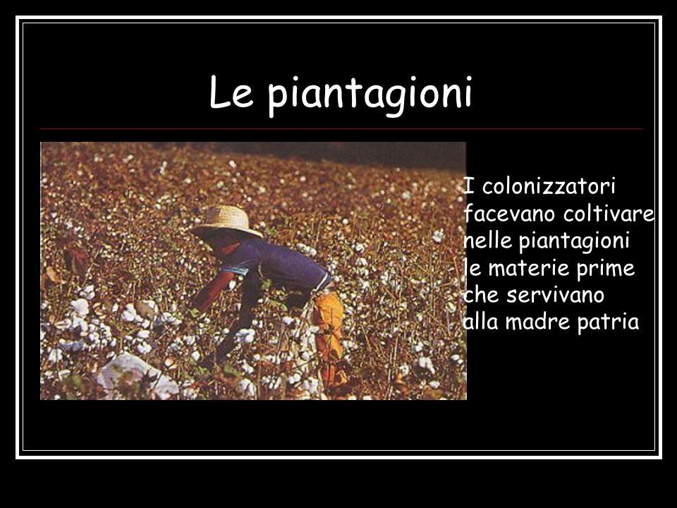 Le piantagioni I colonizzatori facevano coltivare nelle piantagioni le materie prime che servivano alla madre patria