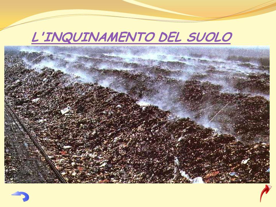 Inquinamento Del Suolo Immagini L'inquinamento Del Suolo