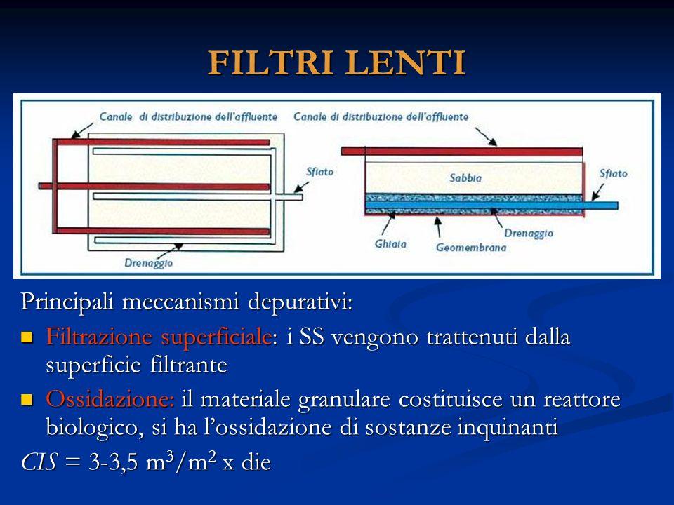 FILTRI LENTI Principali meccanismi depurativi: Filtrazione superficiale: i SS vengono trattenuti dalla superficie filtrante Ossidazione: il materiale