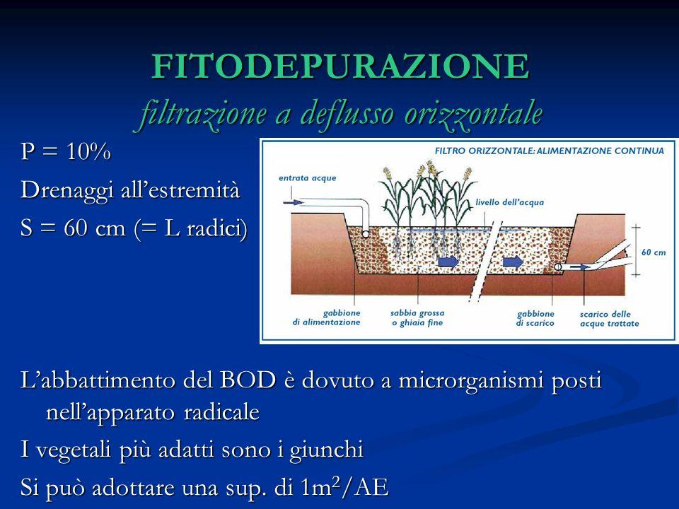 FITODEPURAZIONE filtrazione a deflusso orizzontale P = 10% Drenaggi allestremità S = 60 cm (= L radici) Labbattimento del BOD è dovuto a microrganismi