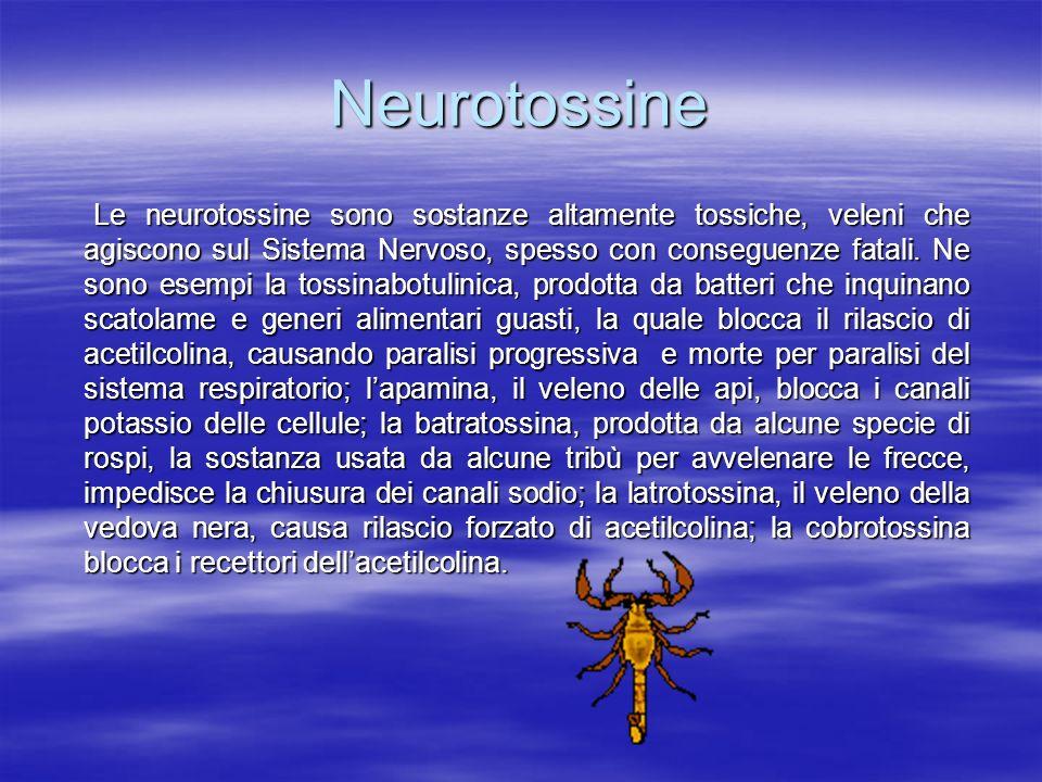 Neurotossine Le neurotossine sono sostanze altamente tossiche, veleni che agiscono sul Sistema Nervoso, spesso con conseguenze fatali. Ne sono esempi