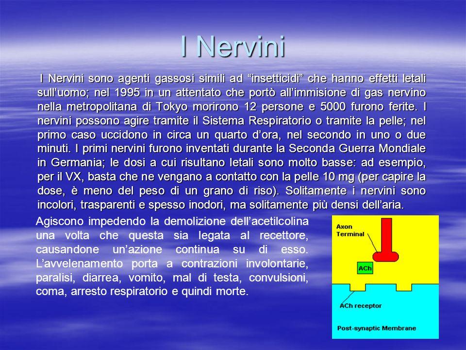 I Nervini I Nervini sono agenti gassosi simili ad insetticidi che hanno effetti letali sulluomo; nel 1995 in un attentato che portò allimmisione di ga