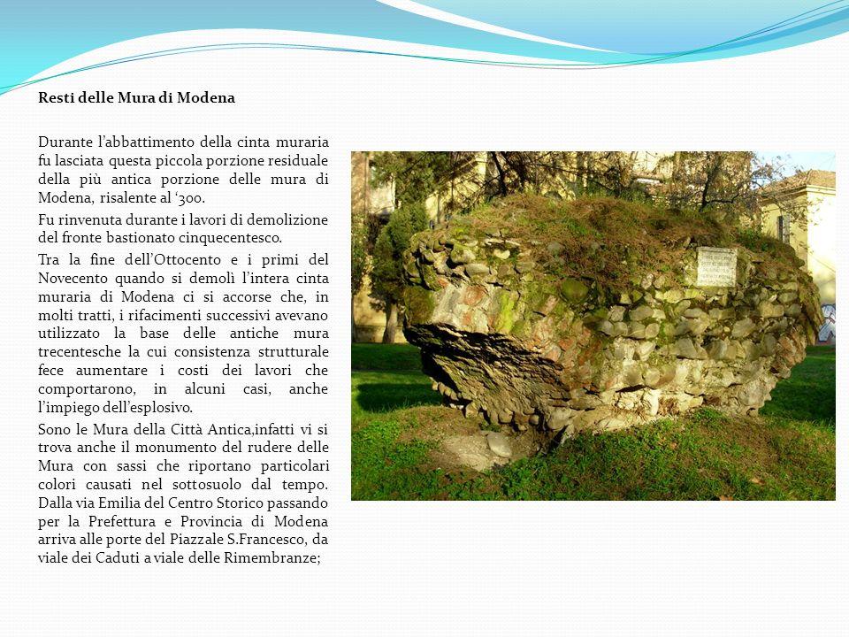 Aspetti naturalistici Lungo il parco si può ammirare il Faggio pendulo, posto lungo viale Muratori allaltezza di via Tiraboschi, le Querce lungo viale Reiter, gli Ippocastani nella zona del monumento.