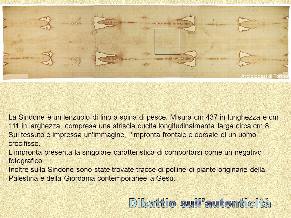 La Sindone è un lenzuolo di lino a spina di pesce. Misura cm 437 in lunghezza e cm 111 in larghezza, compresa una striscia cucita longitudinalmente la