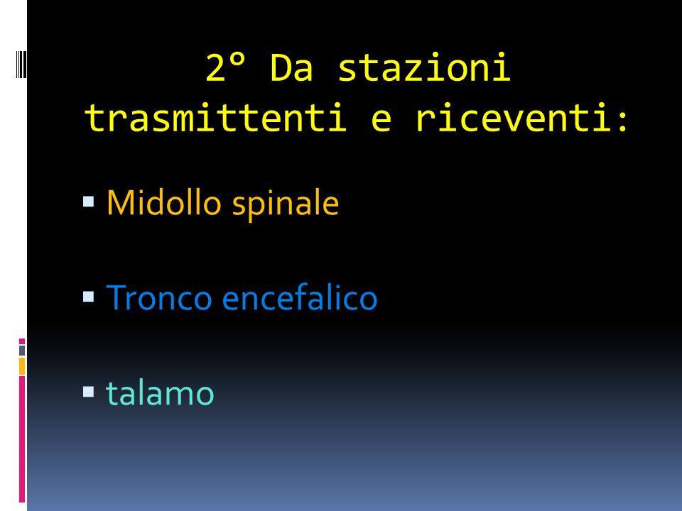 2° Da stazioni trasmittenti e riceventi : Midollo spinale Tronco encefalico talamo