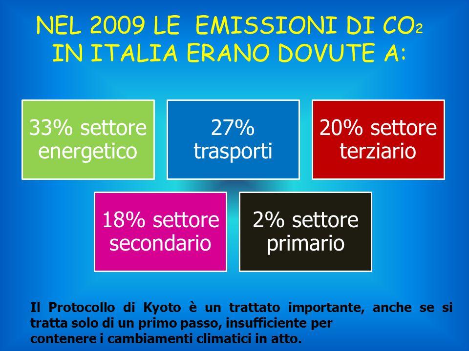 NEL 2009 LE EMISSIONI DI CO 2 IN ITALIA ERANO DOVUTE A: 33% settore energetico 27% trasporti 20% settore terziario 18% settore secondario 2% settore p