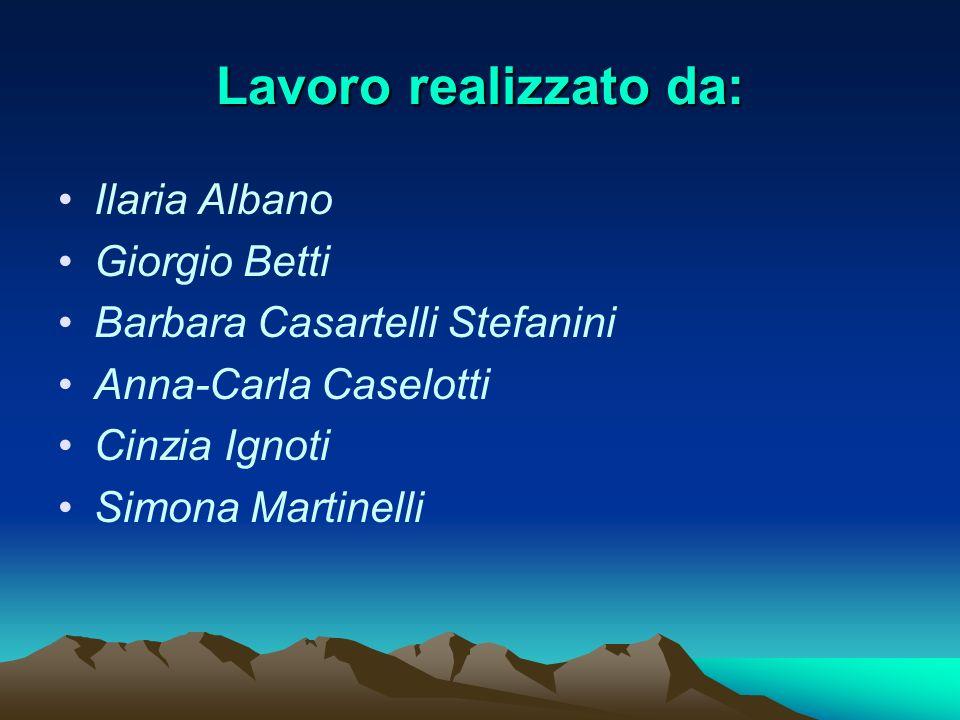 Lavoro realizzato da: Ilaria Albano Giorgio Betti Barbara Casartelli Stefanini Anna-Carla Caselotti Cinzia Ignoti Simona Martinelli