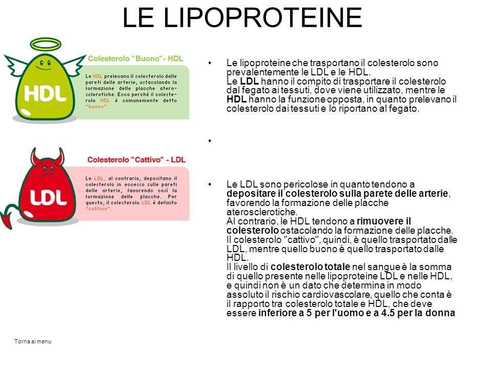 LE LIPOPROTEINE Le lipoproteine che trasportano il colesterolo sono prevalentemente le LDL e le HDL. Le LDL hanno il compito di trasportare il coleste