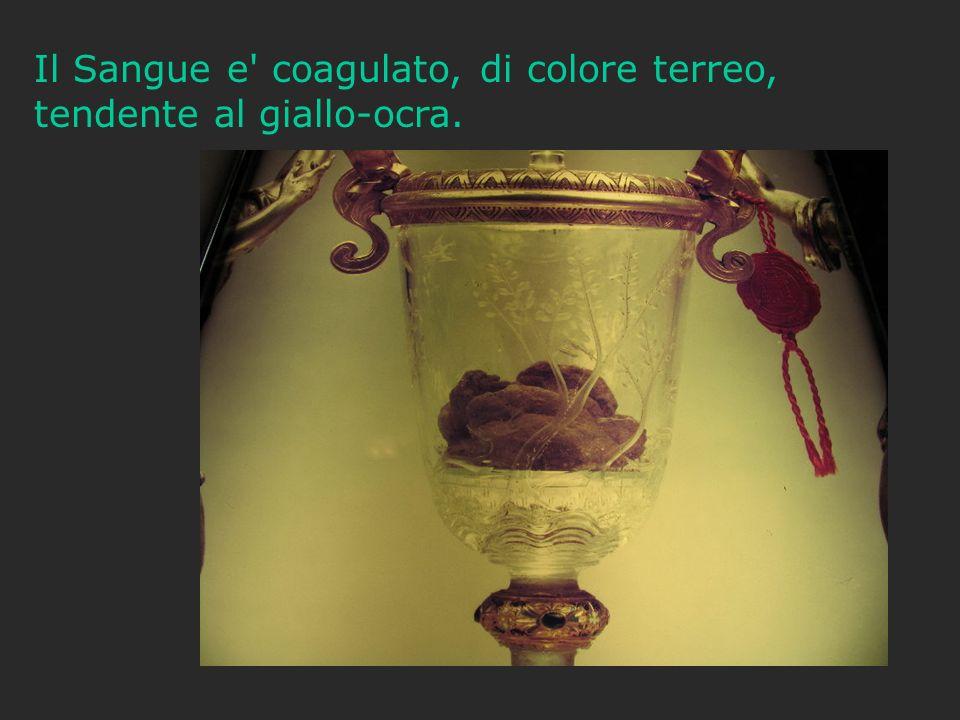 Il Sangue e' coagulato, di colore terreo, tendente al giallo-ocra.