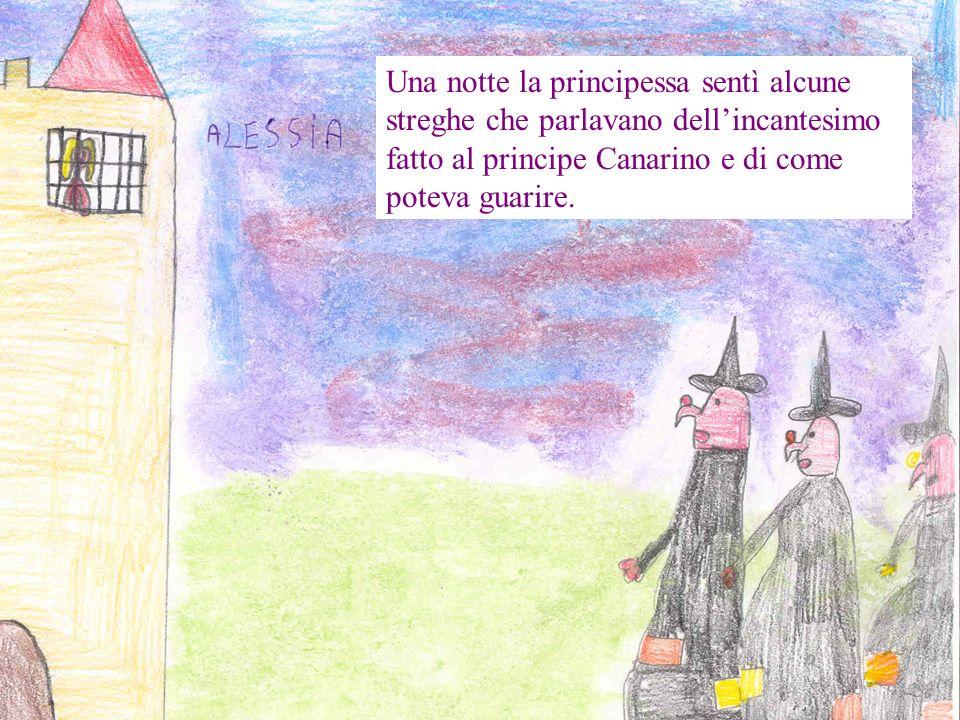 Una notte la principessa sentì alcune streghe che parlavano dellincantesimo fatto al principe Canarino e di come poteva guarire.