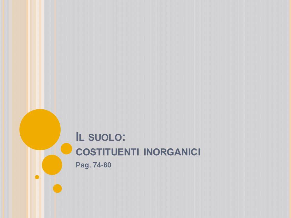 I L SUOLO : COSTITUENTI INORGANICI Pag. 74-80