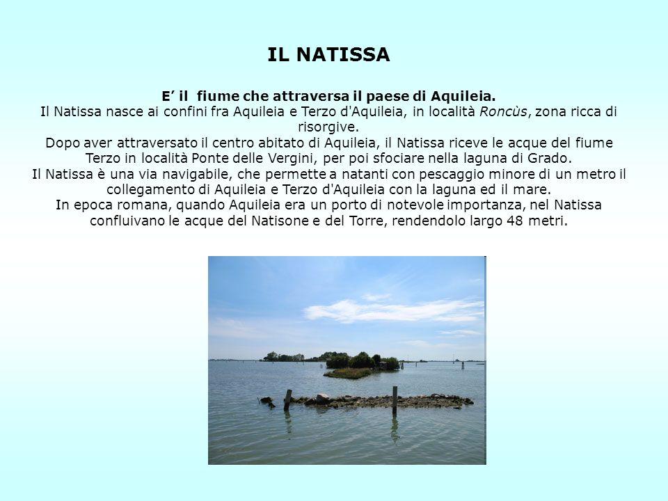 IL NATISSA E il fiume che attraversa il paese di Aquileia. Il Natissa nasce ai confini fra Aquileia e Terzo d'Aquileia, in località Roncùs, zona ricca