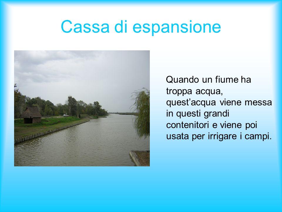 Cassa di espansione Quando un fiume ha troppa acqua, questacqua viene messa in questi grandi contenitori e viene poi usata per irrigare i campi.