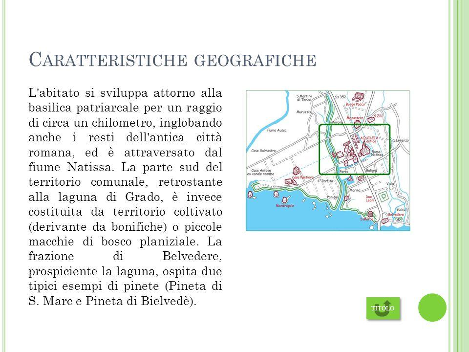 C ARATTERISTICHE GEOGRAFICHE L abitato si sviluppa attorno alla basilica patriarcale per un raggio di circa un chilometro, inglobando anche i resti dell antica città romana, ed è attraversato dal fiume Natissa.